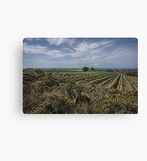 Coastal Agriculture Canvas Print