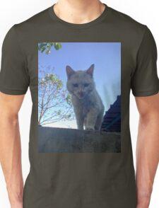 Cute Cat on a Ledge Unisex T-Shirt