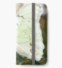 Macro Photo Butterfly on a Leaf iPhone Wallet/Case/Skin