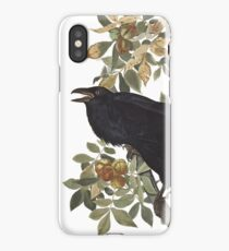 Raven - John James Audubon iPhone Case