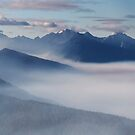 Olympic National Park from the Hurricane Ridge.  by Alex Preiss
