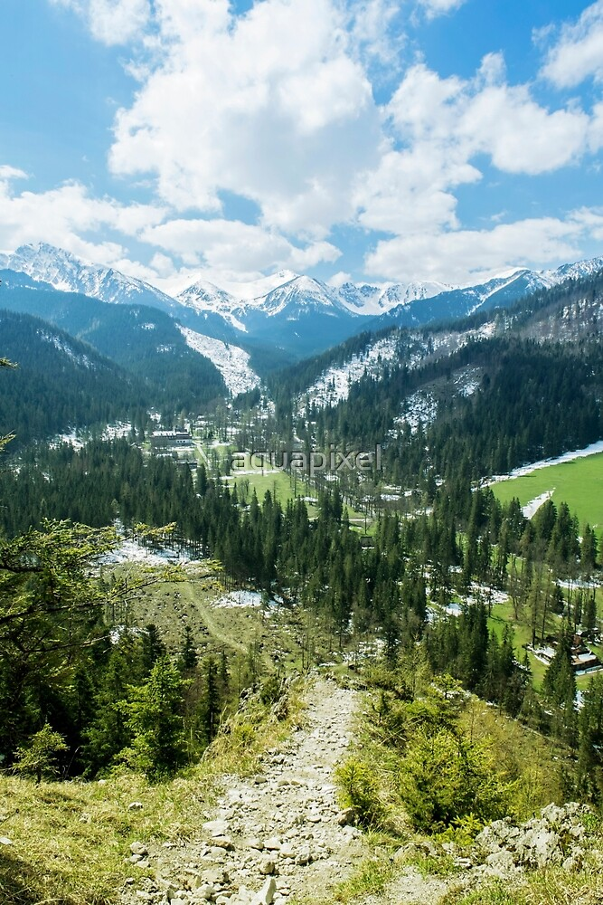 The Tatra Mountains in Poland. Mountains landscape with green forest and snowy peaks. Summer time by aquapixel