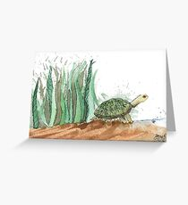 New Friend- Watercolor Turtle Illustration Greeting Card