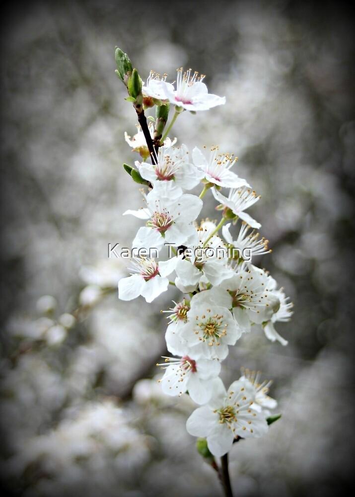 Blossoming by Karen Tregoning