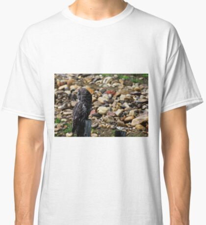 Great Grey Owl Classic T-Shirt