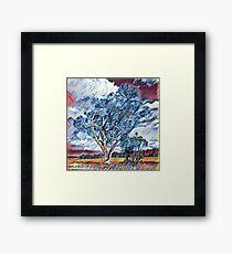 Australian Windswept Tree 02 Framed Print