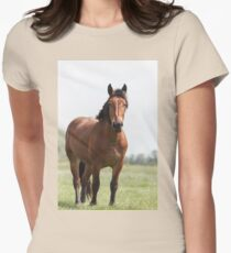 Sorrel horse on pasture Womens Fitted T-Shirt