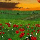 Fiery Skies and Green Fields  by Charldia