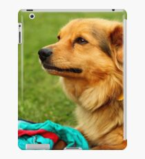 Playful Dog - Nature Photography iPad Case/Skin