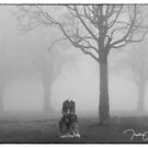 Headless in the fog  by Trish  Anderson