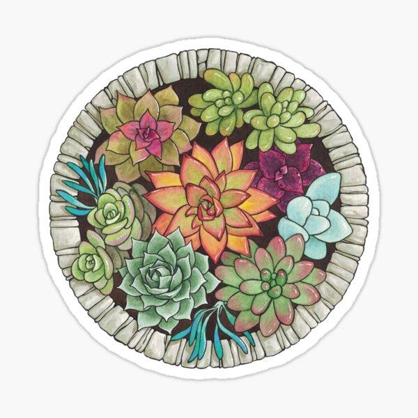 succulents in a stone circle Sticker