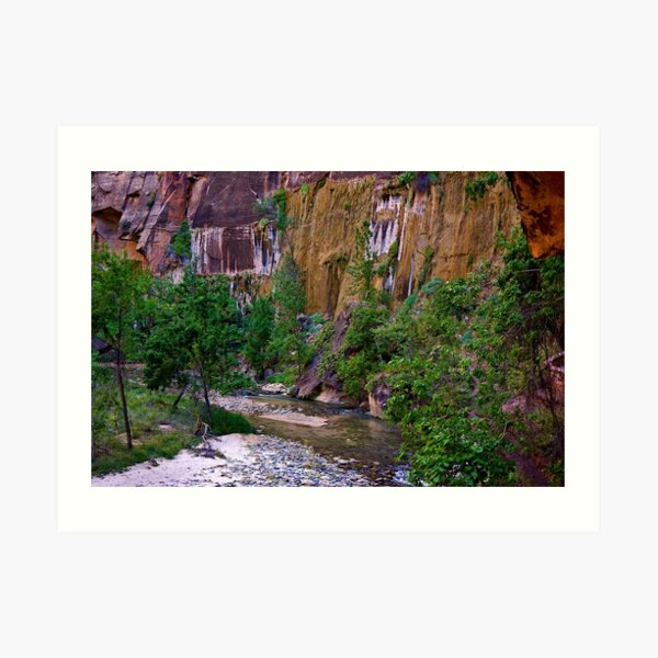 Zion National Park/ Virgin River Art Print