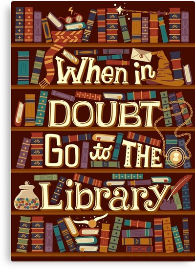 Go to the library by Risa Rodil