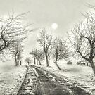 Winter Solstice by © Kira Bodensted