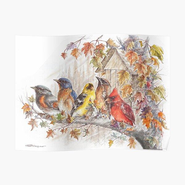 Wild Birds on a Limb  Poster