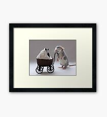 Froppy when he was about 8 weeks old. Framed Print
