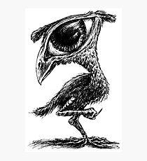 Bird? Photographic Print
