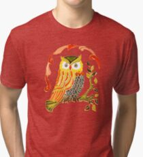 Lovely Cute Owl Tri-blend T-Shirt
