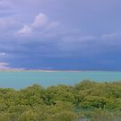 town beach afternoon wet season storm  by Elliot62