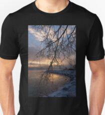 A Curtain of Frozen Branches - Ice Storm Sunrise T-Shirt