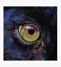 Panther Eye Photographic Print