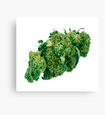 Kush weed Canvas Print