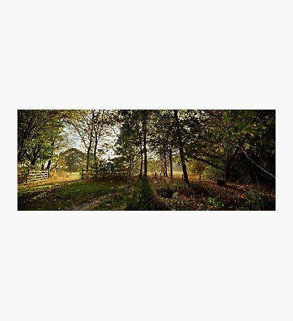 Preston Park, Stockton on Tees Photographic Print