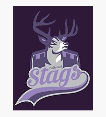Falkreath Stags Photographic Print