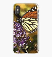 Colors of Fall iPhone Case