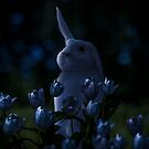 Night Hare by Randy Turnbow