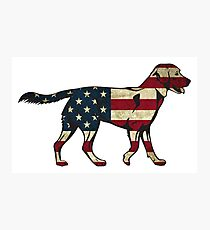 American Flag Dog Sticker Photographic Print