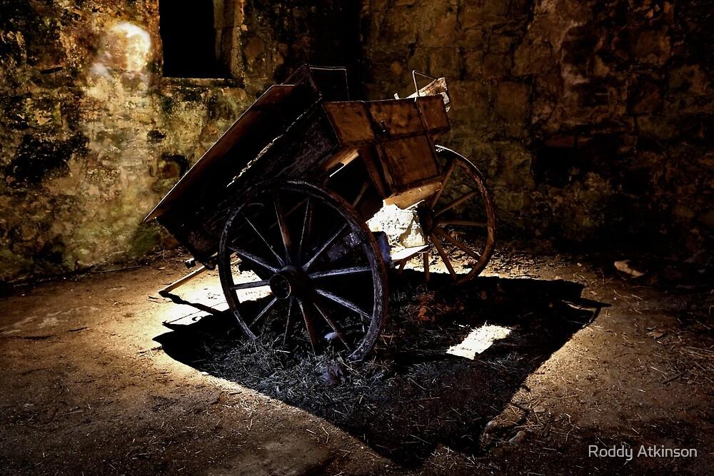 The Wagon Lady by Roddy Atkinson