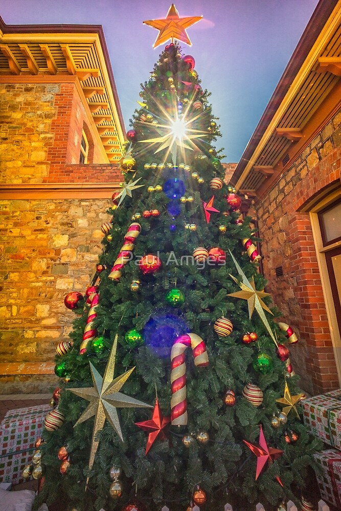 Christmas Tree by Paul Amyes