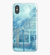 The Christmas Conservatory iPhone Case/Skin
