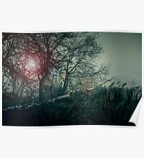 Dark landscape with forest. Evening in the forest, the setting sun through the trees. Fallen tree Poster