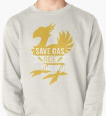 Save Gas Ride a Chocobo Pullover