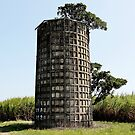 Dimpled Silo by Stephen Mitchell