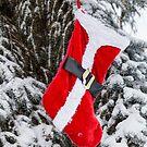 Bright Red Santa Stocking by Bo Insogna