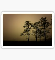 The dark trees at the forest edge. Sepia dark background Sticker