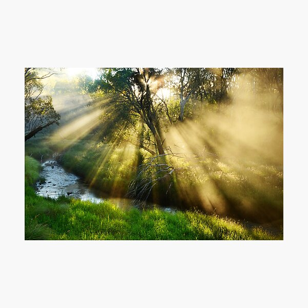 Summer morning, Victoria River Photographic Print