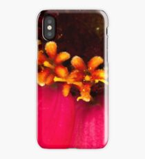 Flowers Within The Flower - Zinnia Macro  iPhone Case/Skin
