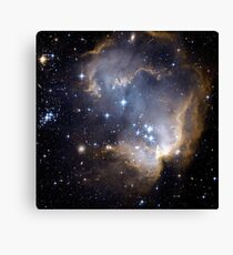 Infant Stars in Nearby galaxy Canvas Print