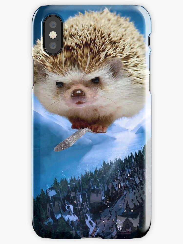 Hedgehog on a Broom Princess Pricklepants by PPricklepants