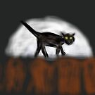 I Don't Bother Chasing Mice Around by Douglas polancih
