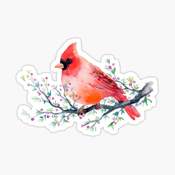 Watercolour red cardinal bird Sticker