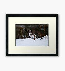 Willow Ptarmigan - Alaska State Bird Framed Print