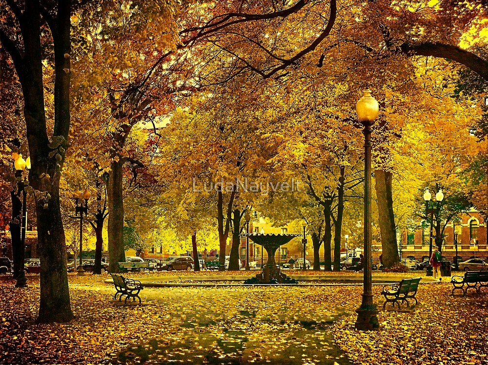 Public Garden, Boston MA by LudaNayvelt