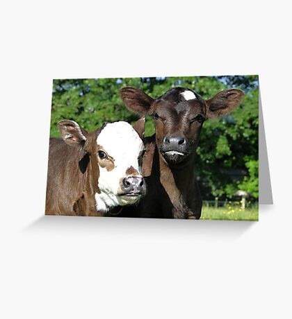 What Mischief Can We Get Up To Today? Greeting Card