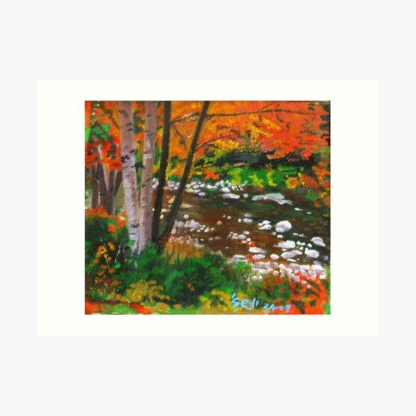 Gentle Stream by Crimson Art Print