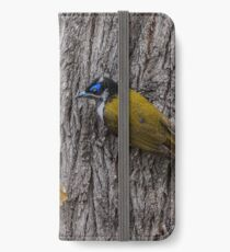 Blue-faced Honeyeater iPhone Wallet/Case/Skin